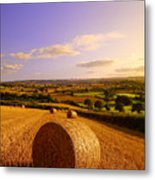 Devon Haybales Metal Print by Neil Buchan-Grant
