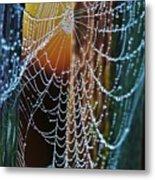 Dew Covered Web Metal Print
