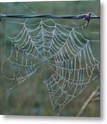 Dew On The Web Metal Print