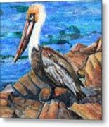 Dick The Pelican Metal Print
