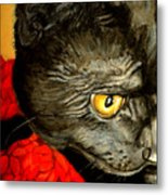 Diego The Cat Metal Print