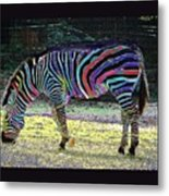 Differt Stripes For Different Types Metal Print