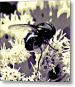 Digital Bottle Fly Metal Print