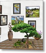 Digital Exhibition _ Bonsai 22 Metal Print
