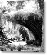 Digital Paint Black White Landscape Louisiana  Metal Print