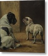 Dignity And Impudence Metal Print