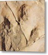 Dino Tracks In The Desert 3 Metal Print