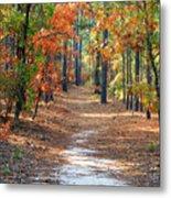 Autumn Scene Dirt Road Metal Print