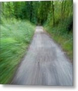 Dirt Path And Surrounding Bush Seen From A Cyclist's Point Of View Metal Print