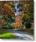 Dirt Road Through Vermont Fall Foliage Metal Print