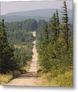 Dirt Road To Dolly Sods Metal Print