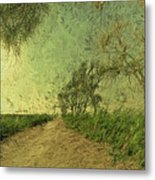 Dirt Road To The Fields Metal Print