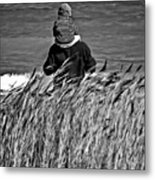 Discovery Bw Metal Print
