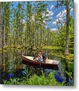 Discovery In A Cypress Swamp Metal Print