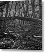 Distant Escape From My Mind Metal Print