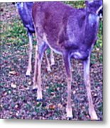 Distrubing Deer Metal Print