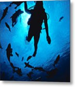 Diver And Reef Fish Metal Print