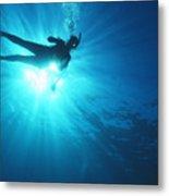Diver On Mahi Wreck Metal Print by Bob Abraham - Printscapes