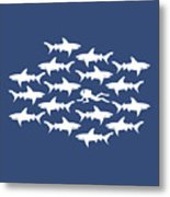 Diver Swimming With Sharks Metal Print