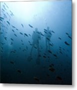 Diving With Fishes Metal Print