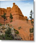 Dixie National Forest Metal Print
