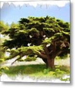 Do-00319 Cedar Tree Metal Print