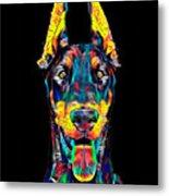 Doberman Dog Breed Head Pet Breed True Friend Color Designed Metal Print