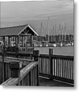 Dock At Mandarin Park Black And White Metal Print