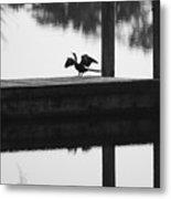 Dock Bird Pre Flight Metal Print