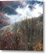 Doe On Autumn Ridge Metal Print