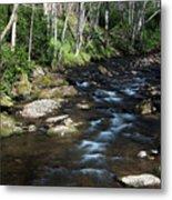 Doe River In April Metal Print