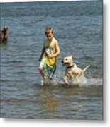 Dog 79 Metal Print by Joyce StJames