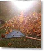 Dog And Autumn Leaves Metal Print