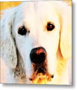 Dog Art - Golden Moments Metal Print