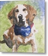 Dog In Bow Tie Metal Print