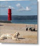 Dog Lying On The Beach In Front Of Red Lighthouse Of Cres Metal Print