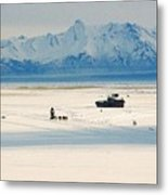 Dog Musher At Cook Inlet - Alaska Metal Print