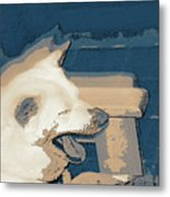 Doge Sneeze 3 Metal Print