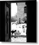 Dogs At The Grave Of Vlad Tepes Metal Print