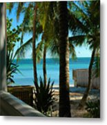Dog's Beach Key West Fl Metal Print