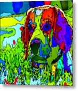 Dogs Can See In Color Metal Print
