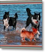 Dogs Playing On The Beach No. 2 L A With Decorative Ornate Printed Frame. Metal Print