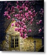 Dogwood By The Window Metal Print