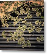 Dogwood Cabin, Smoky Mountains, Tennessee Metal Print