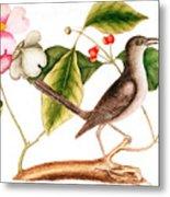 Dogwood  Cornus Florida, And Mocking Bird  Metal Print