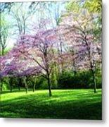Dogwood Spring Metal Print