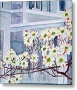 Dogwood Time In Oldtown Metal Print