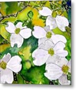 Dogwood Tree Flowers Metal Print