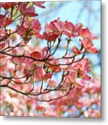 Dogwood Tree Landscape Pink Dogwood Flowers Art Metal Print