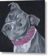 Dolce Metal Print by Stacey Jasmin
